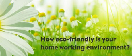 Eco-friendly home insurance