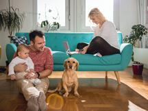 Specialist home insurance