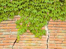 Insuring Homes Affected By Subsidence